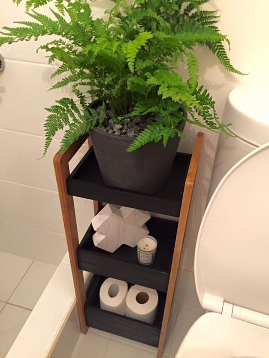 Kmart stand for beside the toilet - I have one similar which I can paint & stain to look like this! Perfect