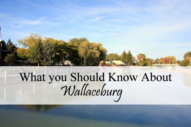 What Your Should Know About Wallaceburg. Municipality of Chatham-Kent, Ontario…