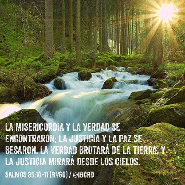Salmos 85:10-11 La misericordia y la verdad se encontraron ...