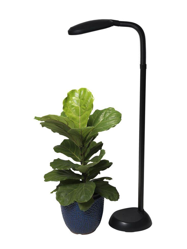 CFL Grow Light - Full Spectrum Floor Plant Lamp | Gardeners.com