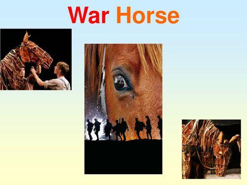 Short Essay on Horse