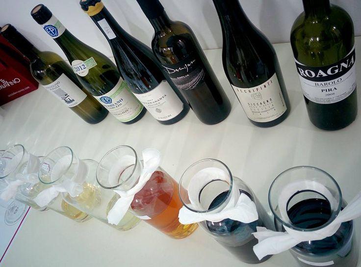 #wine vs #nature?? #organicwine #biodynamicwine #naturalwine #accademiavino #ariannaocchipinti #emidiopepe #damijanpodversic #foradori