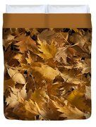 Golden Birch Leaves  Duvet Cover by Sandra Foster