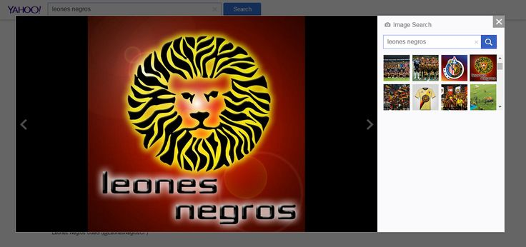 leones negros - Yahoo Search Results