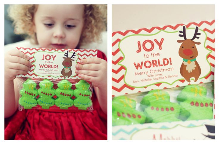 Super excited to share these Printable Christmas Treat Bag Tags!We took the photos below real quick after just finishing up doinga 5 minute ChristmasCard session in our Family Room….I h…