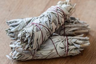 What Are the Benefits of Burning Sage? | eHow