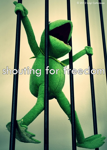 Shouting for freedom