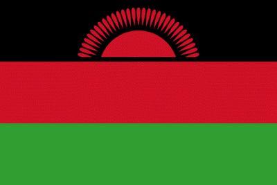 Download Malawi Flag Free