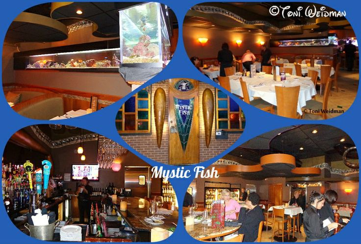 34 best images about palm harbor florida on pinterest for Mystic fish menu