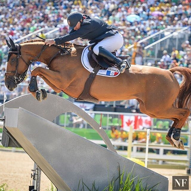 🇫🇷 France's Roger-Yves Bost just won his 12th FEI class of the 2016 season winning Friday's World Cup at Mechelen in Belgium! Learn what George Morris had to say about #bosty's unorthodox riding style, about the record he broke at this year's Olympic Games in Rio and much more at #NFStyle  http://nfstyle.com/thirteen-things-you-need-to-know-about-bosty/