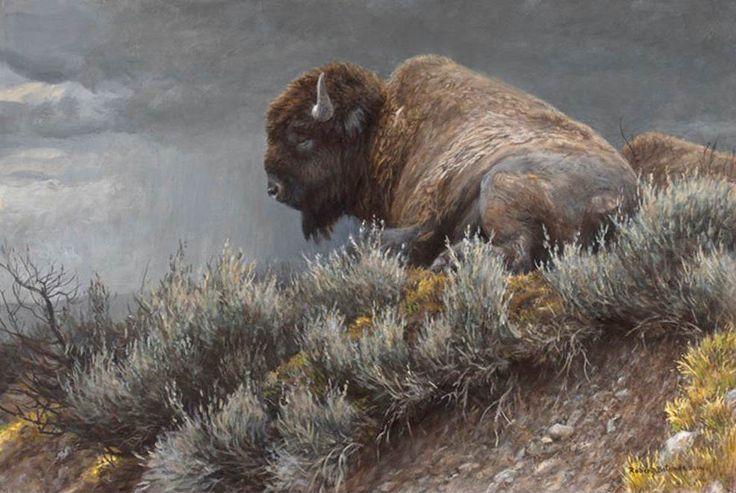 Robert Bateman Weather Watch Bison