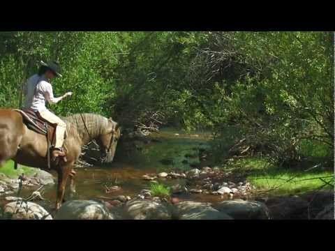 Luxury Horse Property For Sale Near Aspen, Colorado - YouTube