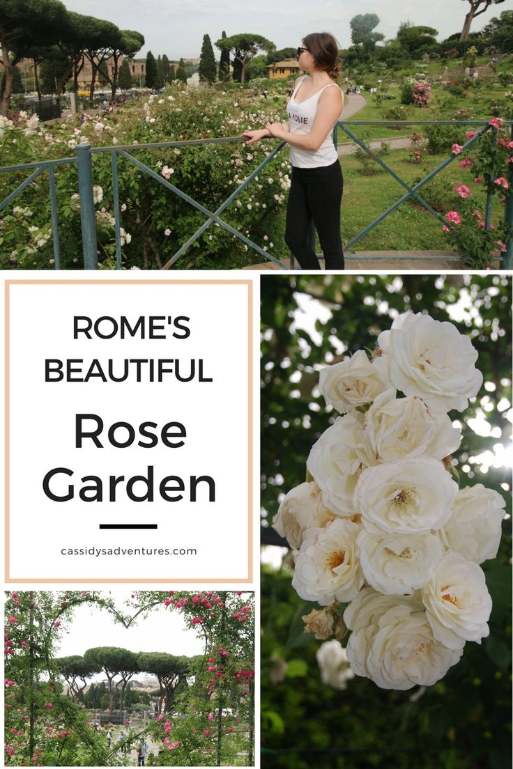 Rome's rose garden, the roseto comunale, is open for only two months a year. Make sure to book your trip during this time! More on the blog.