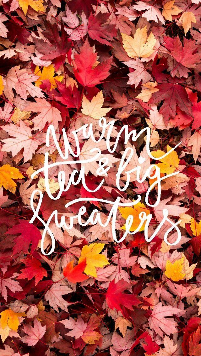 Autumn Quotes Herbst Hintergrundbild Iphone Wallpaper Herbst Herbst Zitate