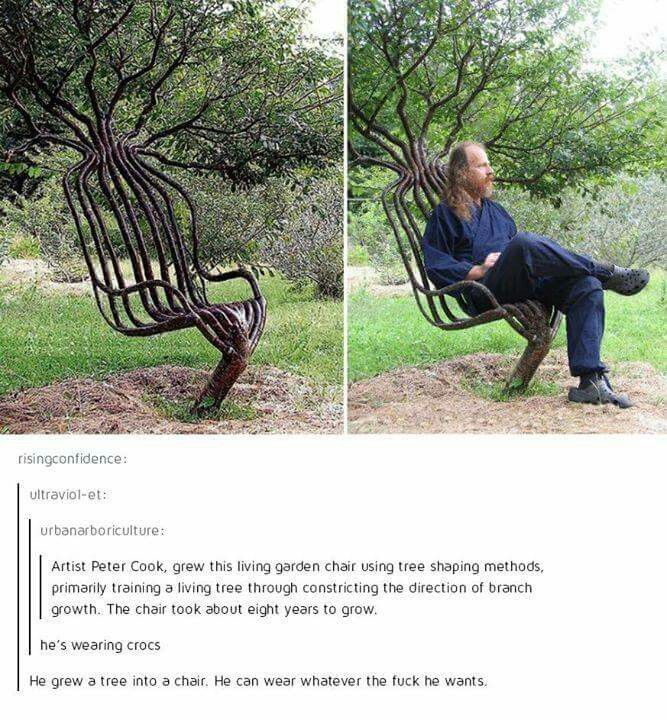 He grew a tree into a chair.