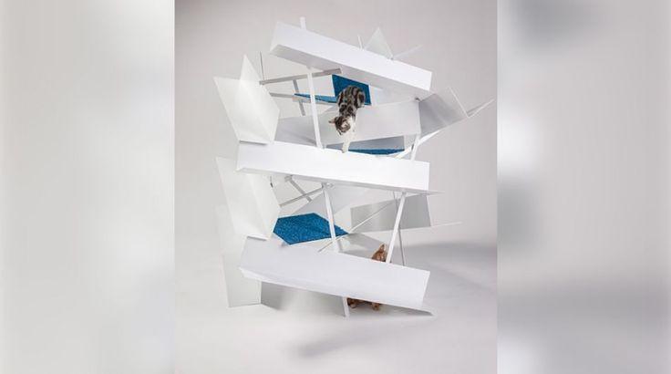 Gatos con estilo: Arquitectos crean modernas casas para ellos   Foto galeria 3 de 6   El Comercio Peru