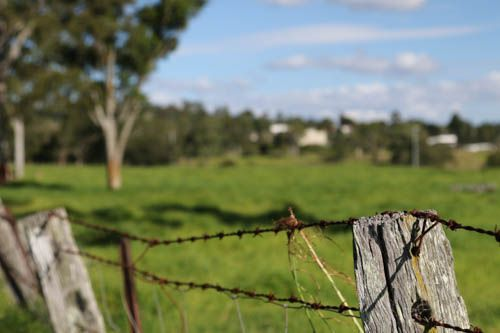 Focal tracking, Old fence on the farm. Canon 7d MII, AV mode, f 4.5, 1/500s, iso 160, 50mm, 24-105mm L series lens, hand held