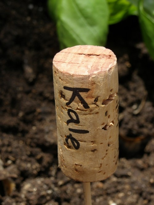 cork plant markers