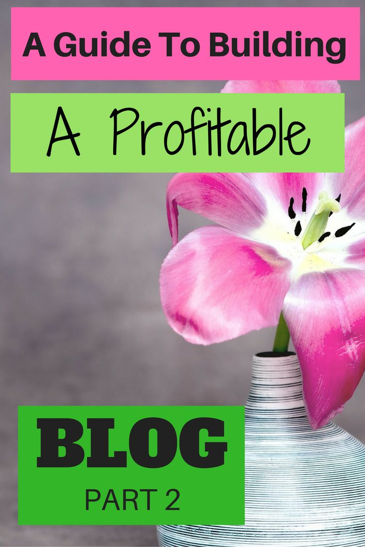 A GUIDE TO BUILDING A PROFITABLE BLOG PART 2