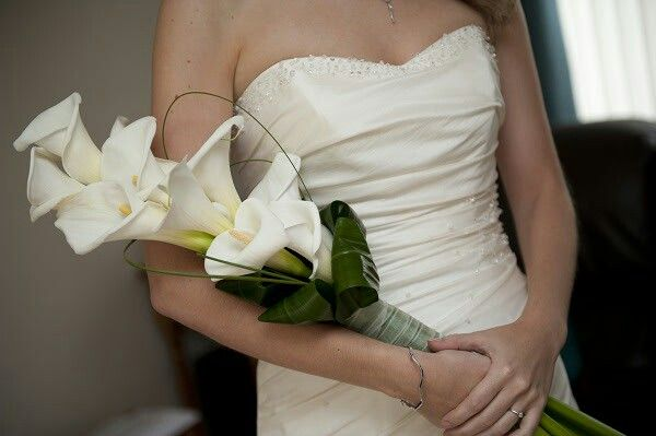 Stunning Arm Sheaf Bridal Bouquet Comprised Of: White Long Stem Calla Lilies, Folded Green Aspidistra, Green Lily Grass Loops