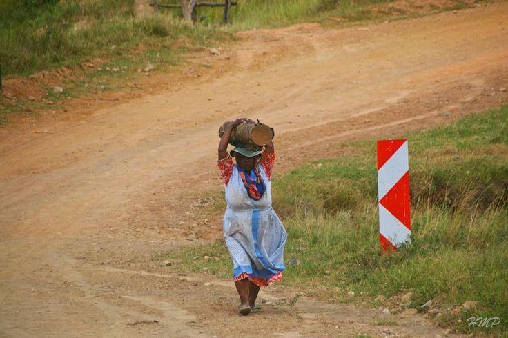 Through POWERSful Lenses . . . .: Piet Retief, Mpumalanga, South Africa