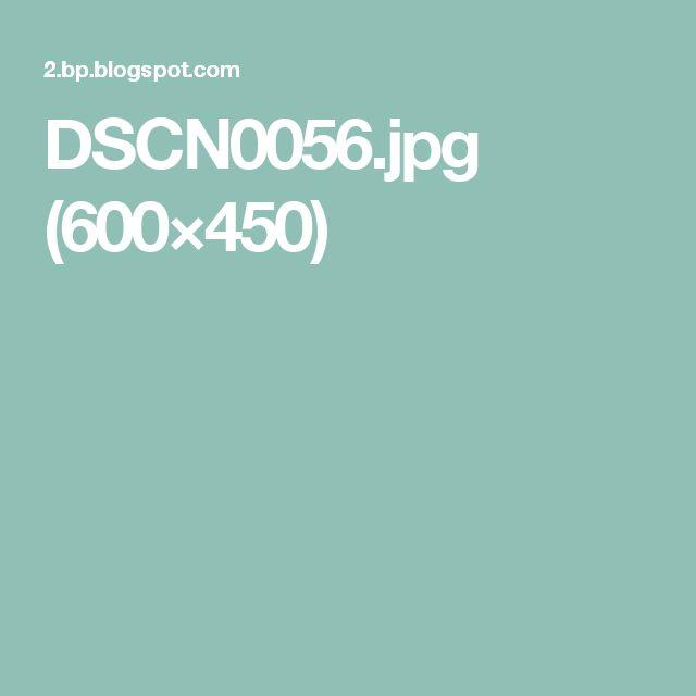 DSCN0056.jpg (600×450)