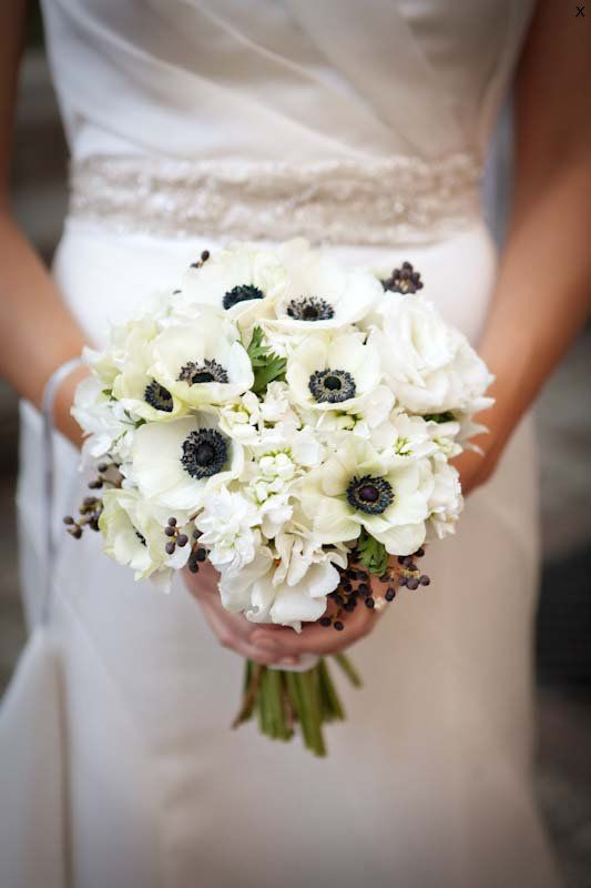 love these flowers but they are in season in winter. ho hum   http://pollenfloraldesign.com/gallery/
