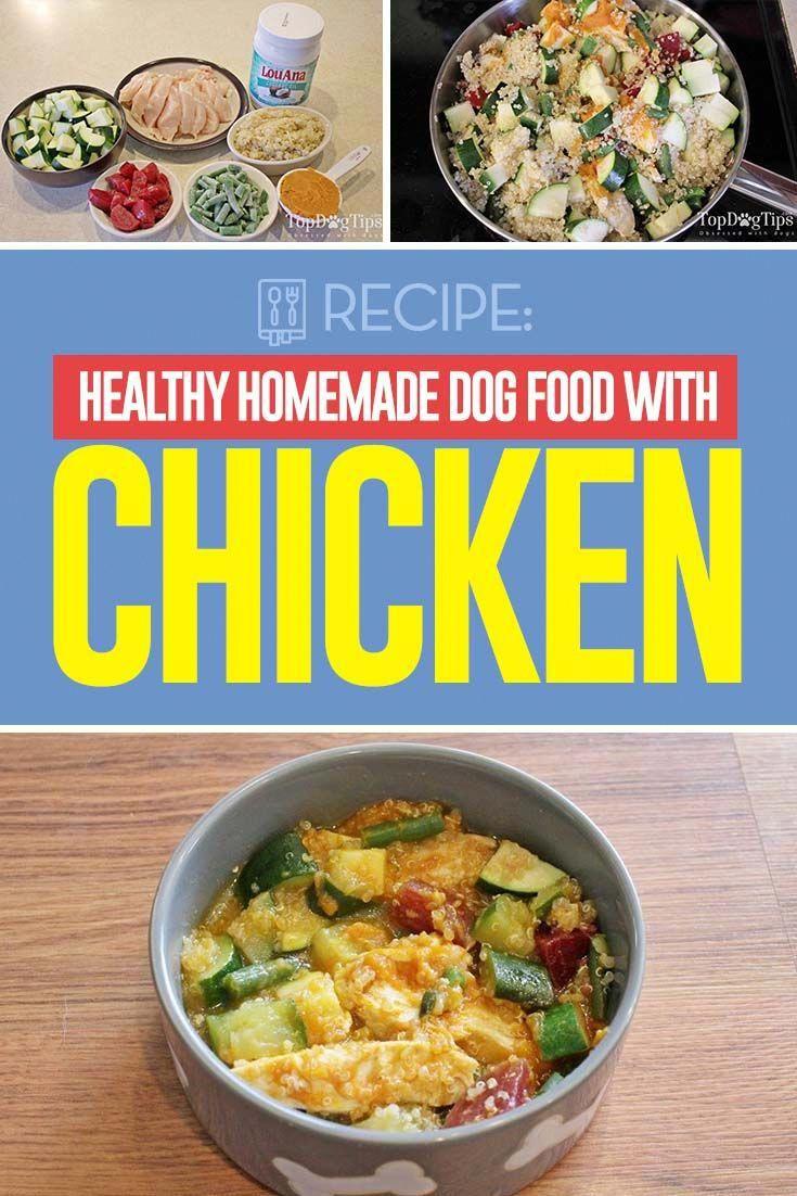Healthy Dog Food Directory Dog Food Recipes Healthy Dog Food