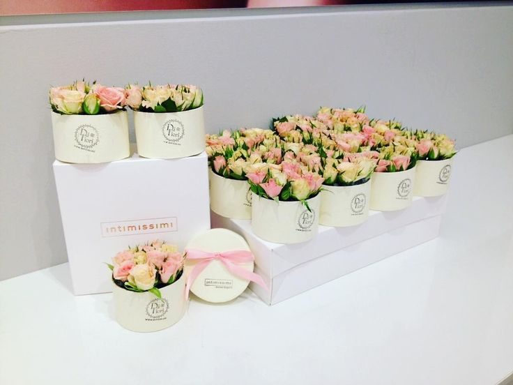 Flower boxes for Intimissimi