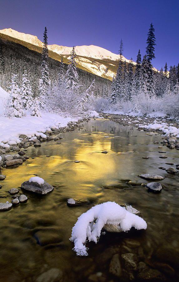 Maligne River and the Colin Range, Jasper National Park, Alberta, Canada: Amazing, Colin O'Donoghue, Jasper National, Alberta Canada, National Parks, Rivers, Maligne River