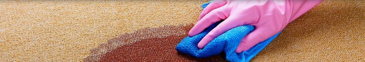 carpet cleaning Wishart