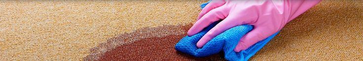 carpet cleaning Wishart
