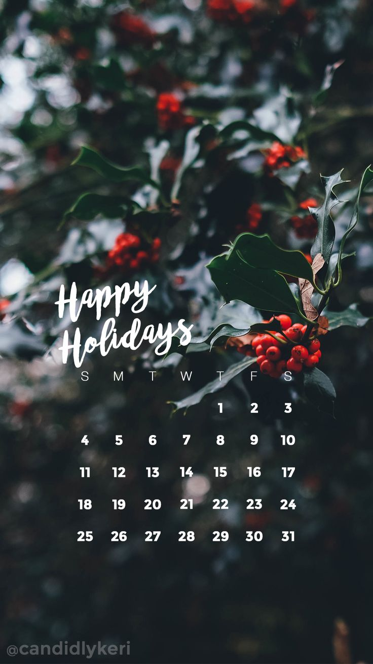 Happy Holiday's holly Christmas festive December calendar 2016 wallpaper you can download for free on the blog! For any device; mobile, desktop, iphone, android!