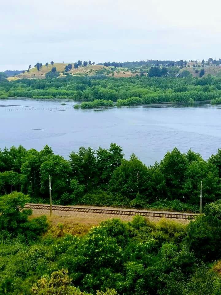 Rio Laja . Región del BioBio.