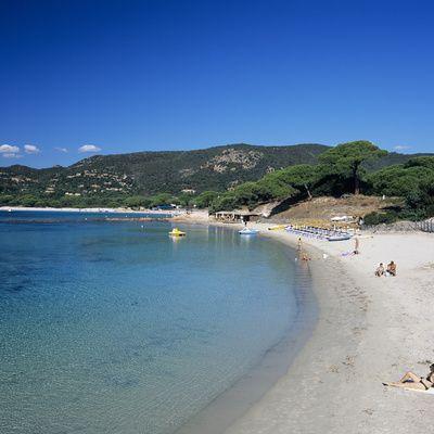 Palombaggia Beach, Near Porto Vecchio, Southeast Coast, Corsica, France, Mediterranean, Europe