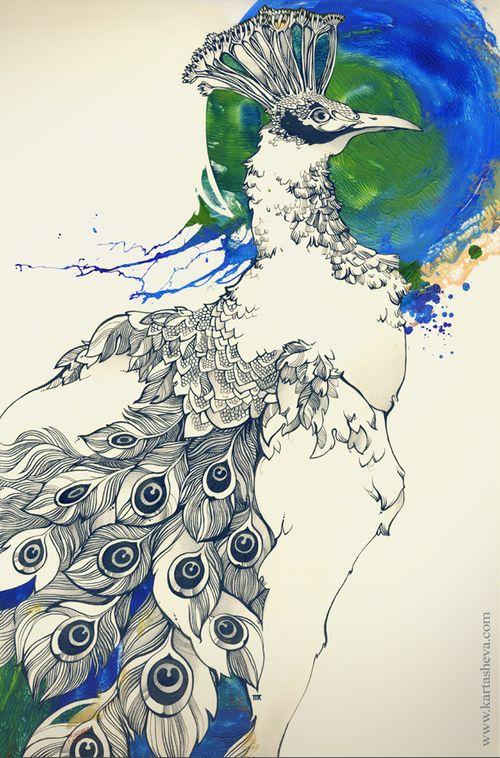 Ink drawings by Tetiana Kartasheva, via BehanceBehance, Peacocks Obsession, Art Prints, Tetiana Kartasheva, Ink Drawings, Illustration Art, Birds, Peacocks Feathers, Tatyana Kartasheva