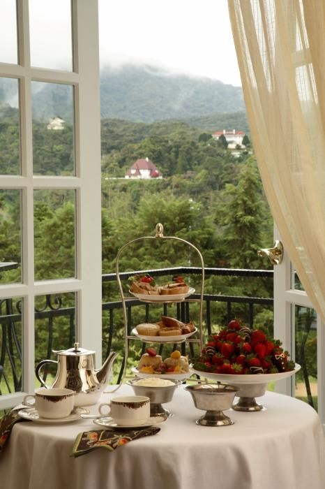 Afternoon tea overlooking the mountains!