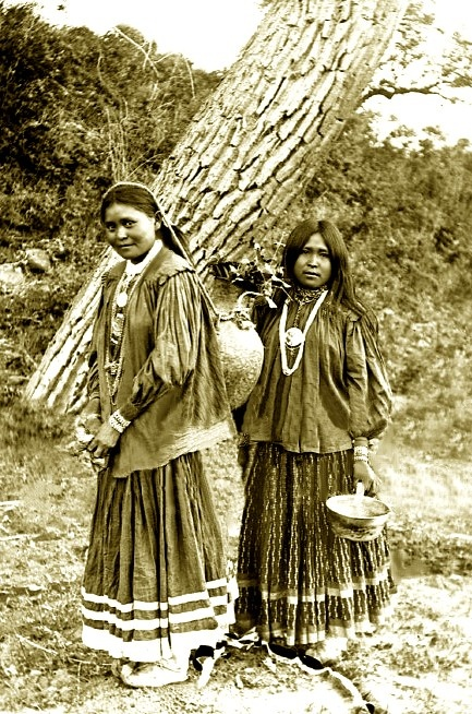 Apache women from east fork of Clear Creek, Arizona. Photographed: 1900. ~~Come to Southeastern Arizona and stay at the Hummingbird Ranch Vacation House in Pearce AZ and learn more about the Apache history. http://vacationhomerentals.com/68121 See where Geronimo & Cochise once lived in The Sulphur Springs Valley. 520-265-3079