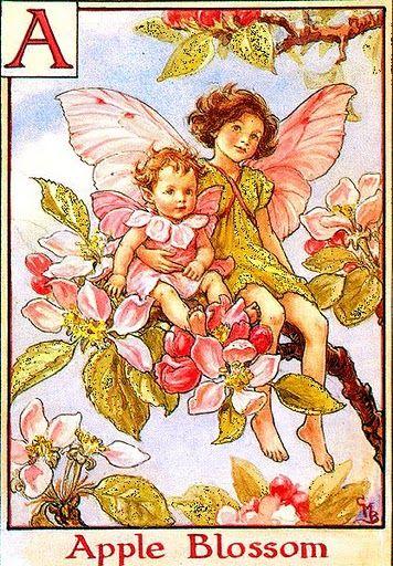 *Cicely Mary Barker.  Apple blossom fairies