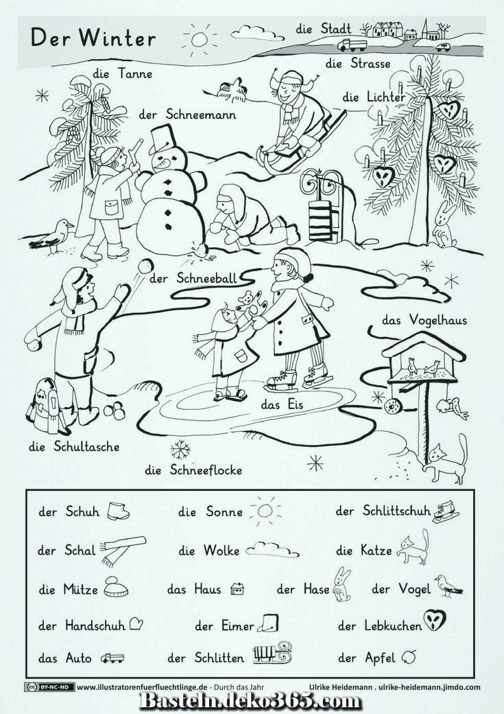 tiere im winter 09 Überwinterungsarten in 2020 with