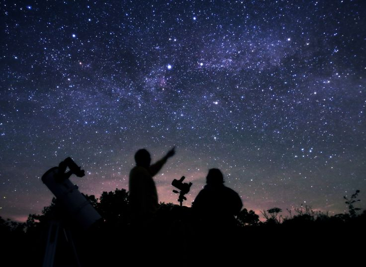 Stargazing Done Right: The Dark Sky Viewing Area in Lennox & Addington County   The Great Waterway Blog #starrynight #silhouette