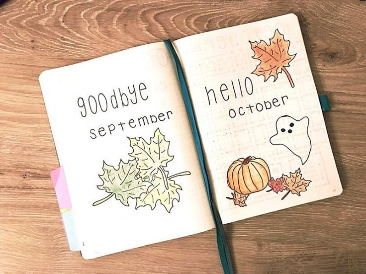 See this Instagram photo by @nittany_bujo • 4,022 likes