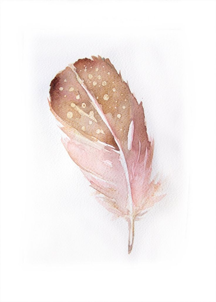 Watercolor painting of Feather-Art original-Feather in peach and gold 7,5/11 inches