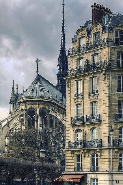 Notre Dame Cathedral, gardens view, Paris, France.