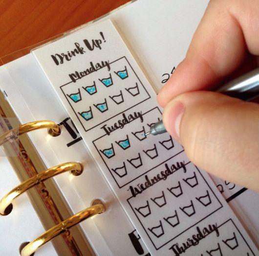 laminated, laminated crafts, laminated checklists, uses for a laminator, craft ideas worth laminating, organizing ideas worth laminating, planner, filofax