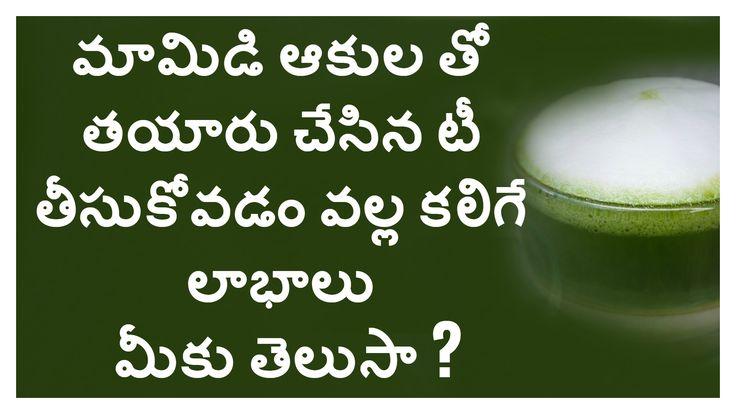 #Mango Leaf #Health Benefits   మామిడి ఆకులు ఉపయోగాలు  #Story TodayTv  Health Tip  