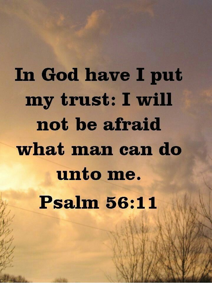 In God Have I Put My Trust Bite Size Bible Study Prayer Verses