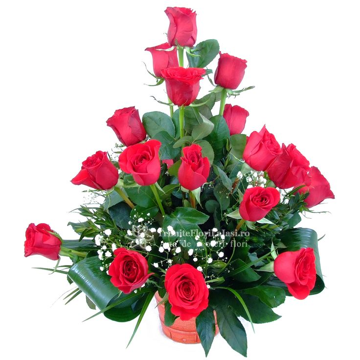 http://www.trimiteflorilaiasi.ro/buchete/trandafiri/red-bourbon