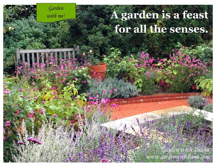 Pin by Diana Stoll on Garden Quotes & Words of Wisdom