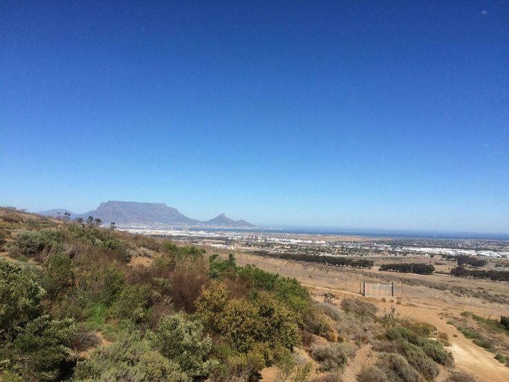 Durbanvillie Hills Wine tasting Farm
